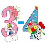Возраст 3-4 года (1)